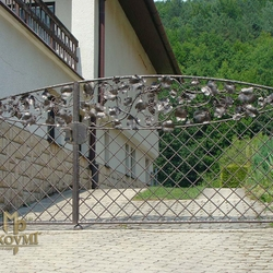 A wrought iron gate - luxury, vine - A hand forged gate