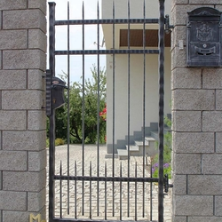 A simple wrought iron gate - A modern style